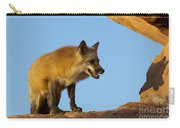 Checking My Shadow Carry-all Pouch by Sandra Bronstein