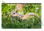Cheeky Chipmunk Carry-all Pouch