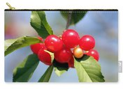Cheery Cherries Carry-all Pouch