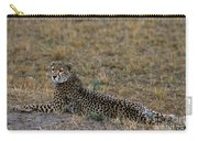 Cheetah At Rest Carry-all Pouch