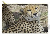 Cheetahs Resting Carry-all Pouch