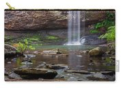 Cherokee Falls - Cloudland State Park Georgia Carry-all Pouch