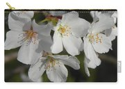 Cherry Blossoms II Carry-all Pouch