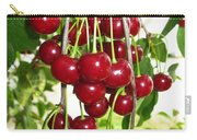 Cherry Time Carry-all Pouch