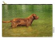 Chesapeake Bay Retriever Carry-all Pouch