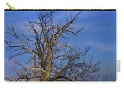Centenary Chestnut At Blue Hour Carry-all Pouch