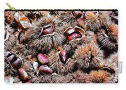 Chestnut Overload Carry-all Pouch