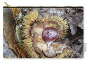 Chestnut Carry-all Pouch