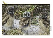 Chick Burrowing Owl  Carry-all Pouch