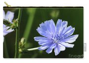 Chicory Carry-all Pouch