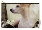 Chihuahua Chiqui Portrait 3 Carry-all Pouch