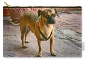 Chihuahua - Dogs Carry-all Pouch