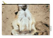 Chilling Meerkat Carry-all Pouch