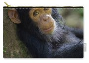Chimpanzee Pan Troglodytes Baby Leaning Carry-all Pouch