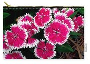 China Pinks 1 Carry-all Pouch