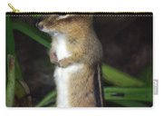 Chipmunk On Alert Carry-all Pouch
