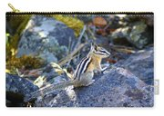 Chipmunk On The Rocks Carry-all Pouch