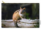 Chipmunk Portrait Carry-all Pouch