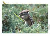 Chipmunk With Bokeh Carry-all Pouch