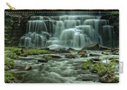 Chittanengo Falls Carry-all Pouch