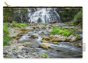 Chittenango Falls In Autumn  Carry-all Pouch