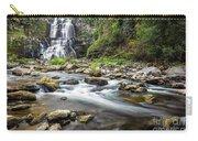 Chittenango Falls  Carry-all Pouch