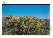 Cholla Carry-all Pouch