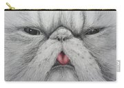 Christinas Kittycat Carry-all Pouch