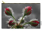 Christmas In May Carry-all Pouch by Lori Deiter
