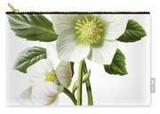 Christmas Rose Floral Illustration Carry-all Pouch