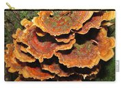 Christmas Turkeytail Carry-all Pouch