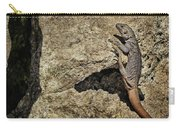 Chuckwalla - Crevice Carry-all Pouch