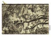 Classic Southern Beauty - Evergreen Plantation -sepia Carry-all Pouch