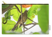 Clay-colored Robin Carry-all Pouch