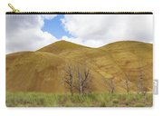 Clear Sky At Painted Hills Carry-all Pouch