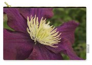 Clematis 4000 Carry-all Pouch