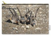 Cliff Swallows Gather Mud Carry-all Pouch