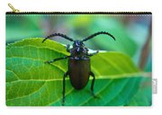 Climbing Beetle Carry-all Pouch