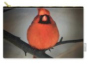 Close Encounter On A Blustery Day Carry-all Pouch by Lois Bryan