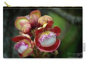 Close-up Macro Of Flower And Fruit Of Cannonball Tree Carry-all Pouch