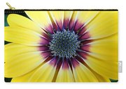 Close-up Of A Yellow African Daisy Carry-all Pouch