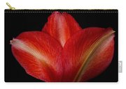 Close-up Of Colorful Amaryllis Flower Petals Carry-all Pouch