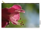Red Horsechestnut Flower Carry-all Pouch