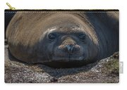 Close-up Of Elephant Seal Looking At Camera Carry-all Pouch