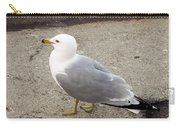 Close-up Of Seagull Carry-all Pouch