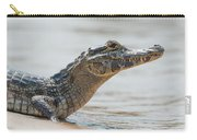 Close-up Of Yacare Caiman On Sandy Beach Carry-all Pouch