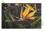 Close Up Photo Of A Bee On A Bird Of Paradise Flower  Carry-all Pouch