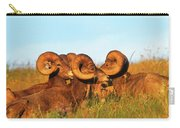 Close Up Portrait Group Of Big Bighorn Mountain Sheep Rams Carry-all Pouch