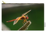 Close Up Red Dragonfly Carry-all Pouch
