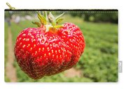 Close Up Shot Strawberry With Planting Strawberry Background Carry-all Pouch by Alex Grichenko